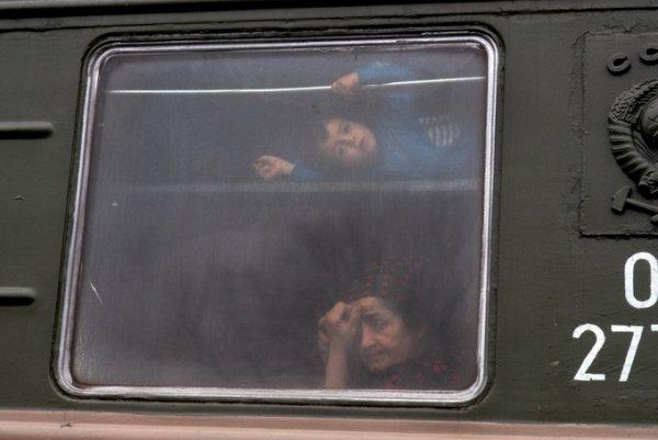 Чеченские беженцы, 1994
