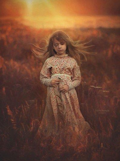 На закате. Автор фото: Надежда Шибина