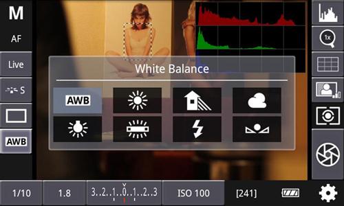 Интерфейс приложения. Баланс белого, гистограмма.
