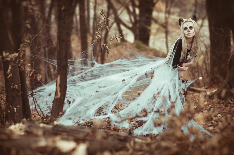 осенние фотографии – Автор Bogdan Danyluk