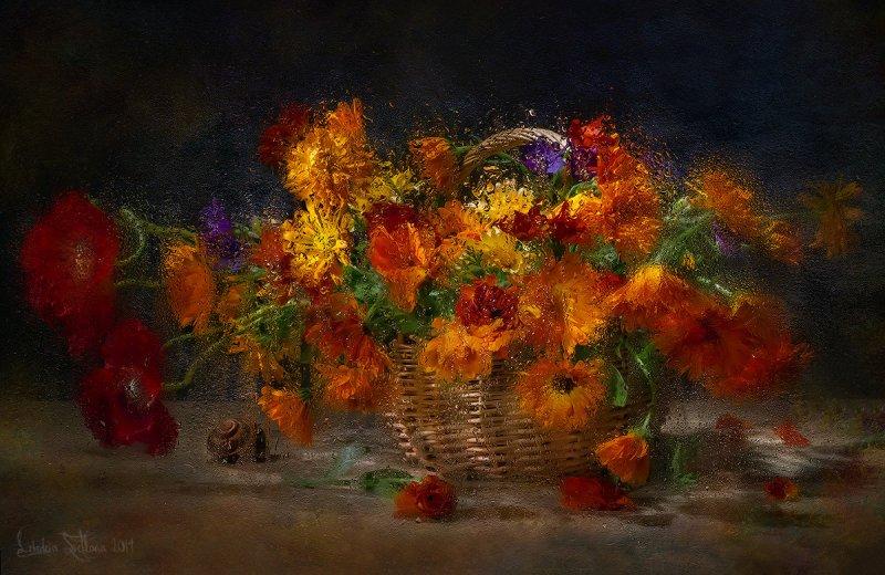 осенние фотографии – Автор Светлана Лебедева