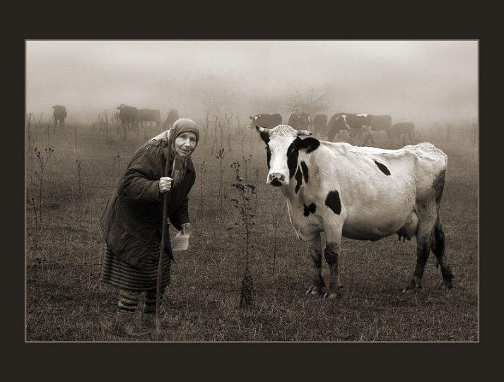 осенние фотографии – Автор Владимир Дядьков