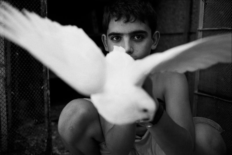 работы известных фотографов мира 12