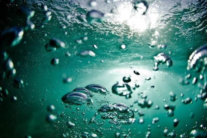 В воде в которой пузыри  1961