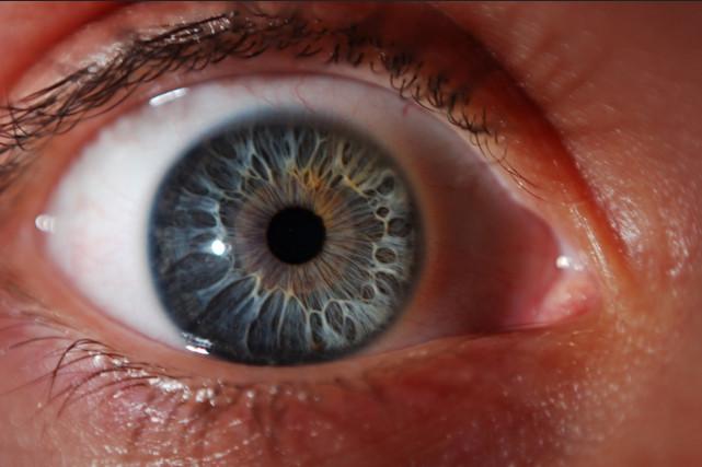 Как фотографировать глаза макро?