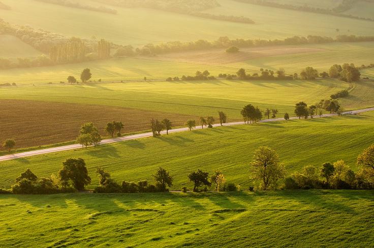 Пейзажи от Даниэль Рерич - №6
