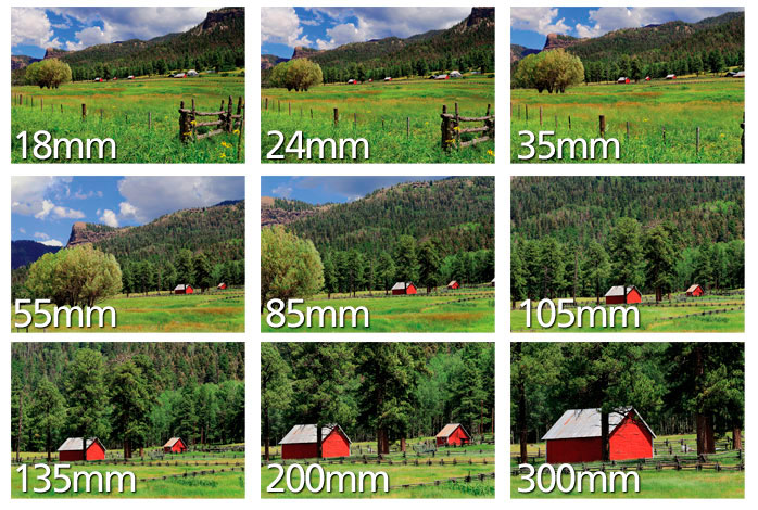 Как фотографировать с размытым фоном? Фокусное расстояние.