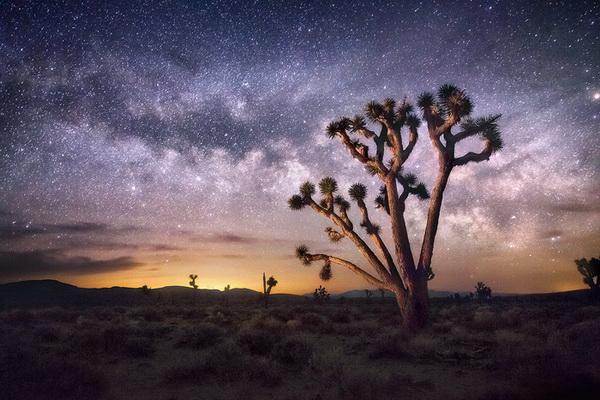 Великолепие пейзажной съемки в творчестве Марка Адамуса - №8