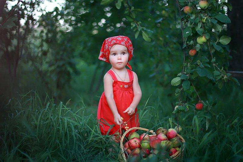 Фотограф Елена Гернович - №16
