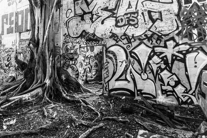 Bare USA: модели в заброшенных местах - №7