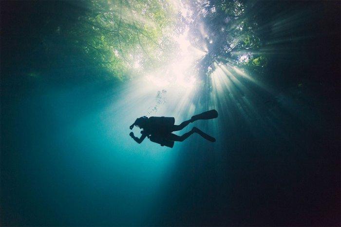 Подводная красота Энрика Адриана Генера - №4