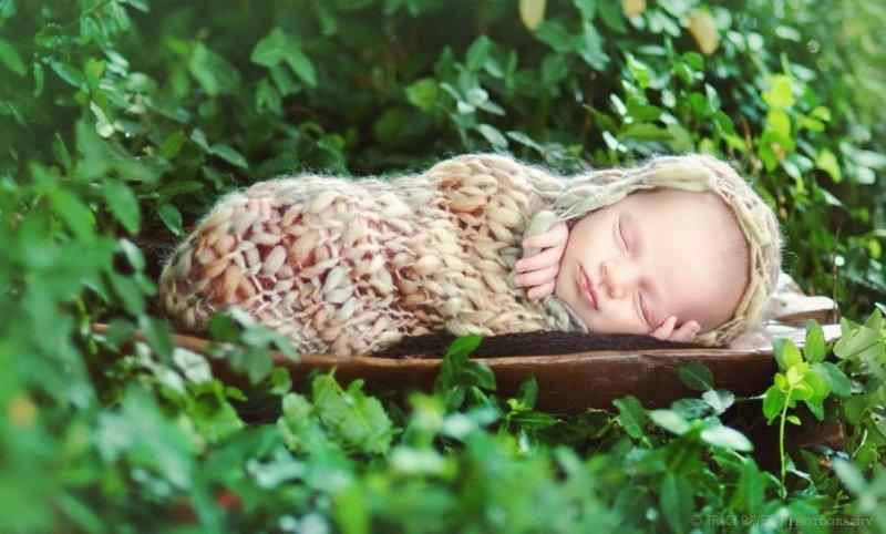 Спящие младенцы в фотографиях Трейси Рейвер - №28