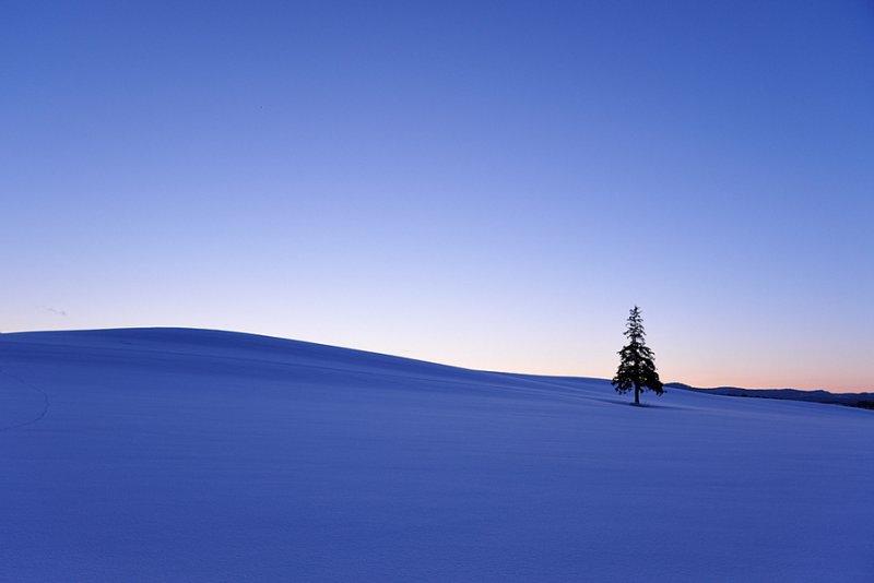 Ландшафтная сказка в фотографиях Кента Шираиши - №15