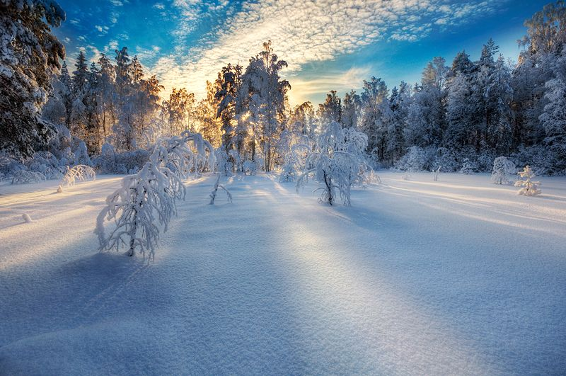 Финские пейзажи Микко Лагерстедта - №25