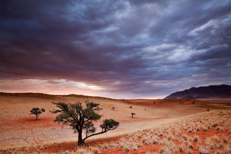 Фантастическая Намибия в объективе Хоугарда Малана - №28