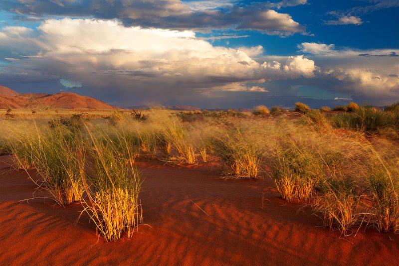 Фантастическая Намибия в объективе Хоугарда Малана - №14