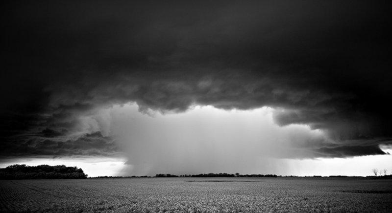 Черно-белые бури Митча Добраунера - №5