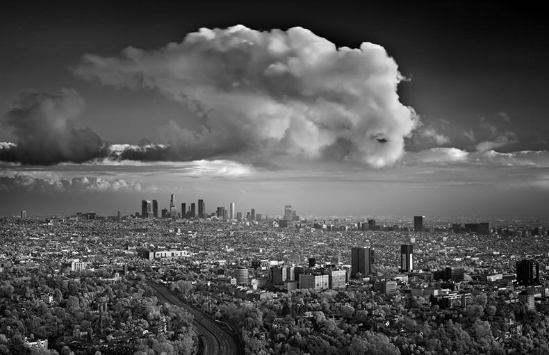 Черно-белые бури Митча Добраунера - №9