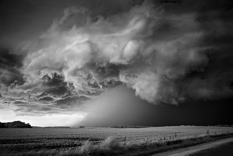 Черно-белые бури Митча Добраунера - №13