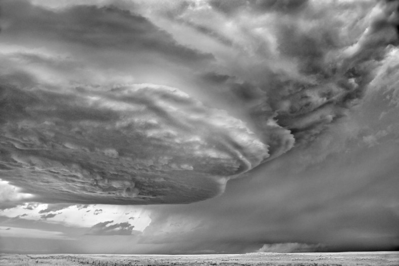 Черно-белые бури Митча Добраунера - №17
