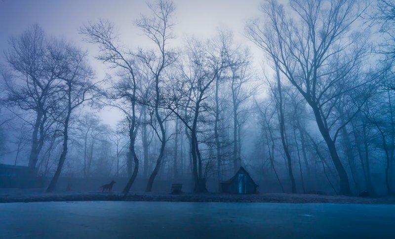 Адам Добровиц и его удивительные пейзажи - №42