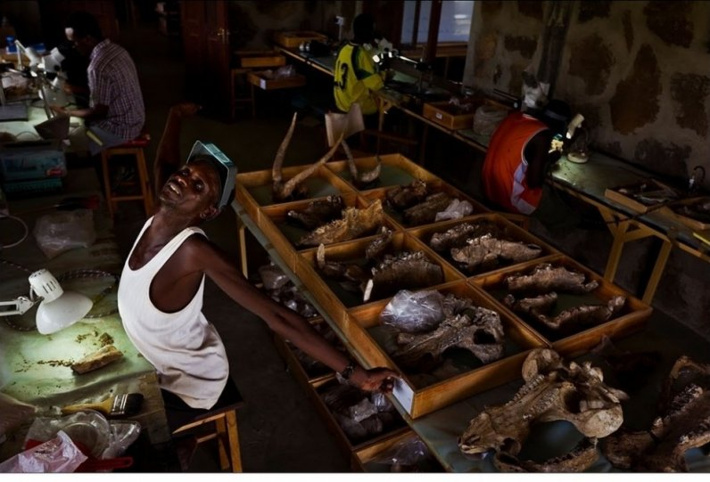 Жизнь Африки в объективе Брента Стиртона - №2