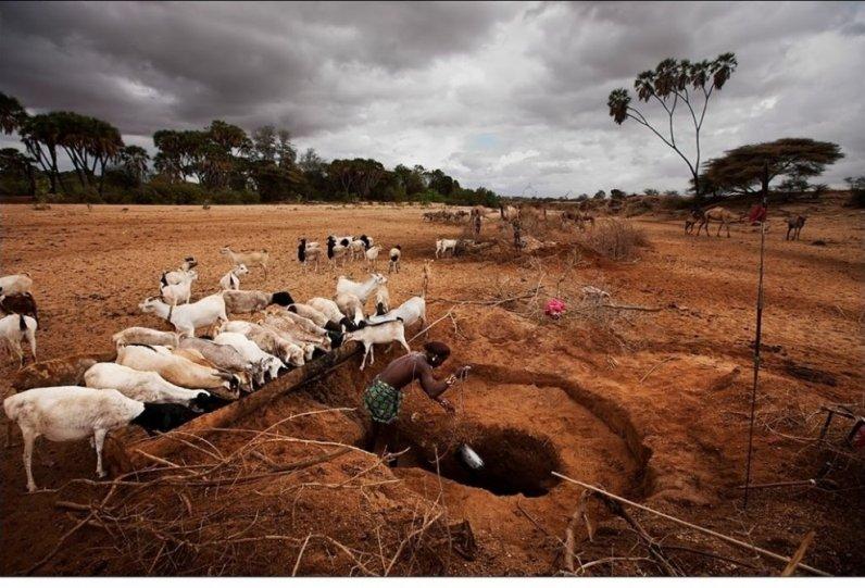 Жизнь Африки в объективе Брента Стиртона - №30