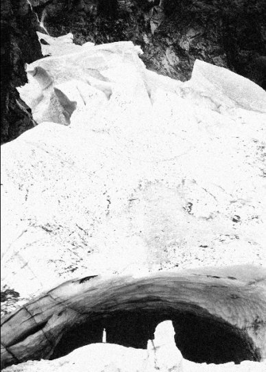 Peter Jamus - №11