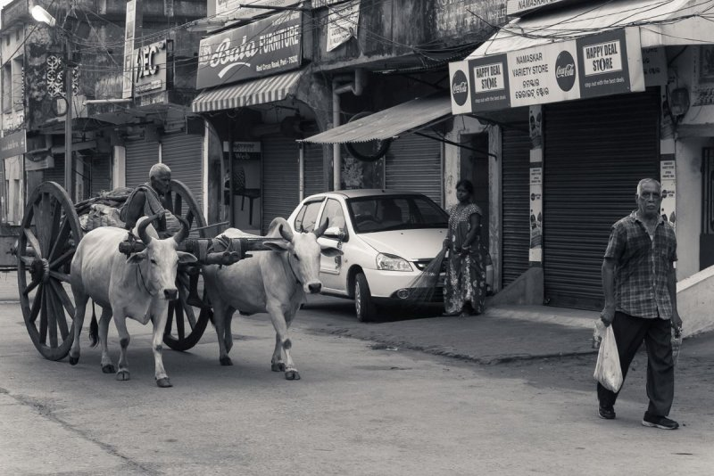 Снигдха Даси