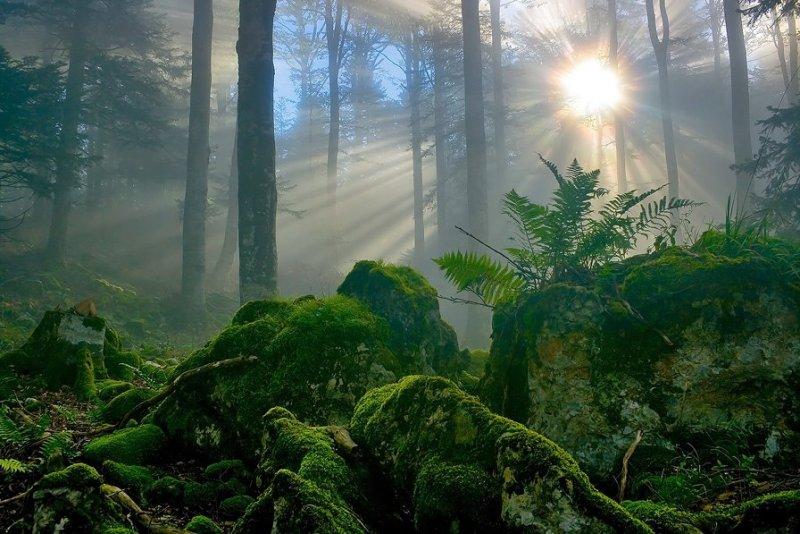 Красота французских альп - №3