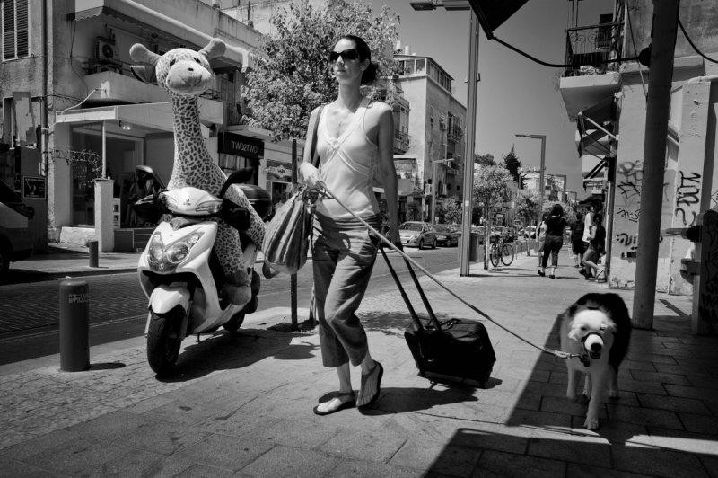 "Gabi Ben-Avraham ""Уличная фотография"" - №16"