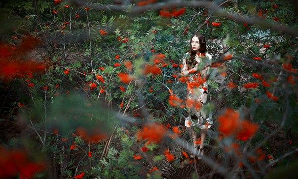 Работы фотографа Дениса Куликова - №14