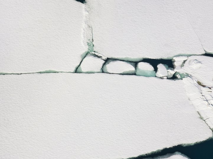 Арктика в фотографиях Дайан Тафт - №6