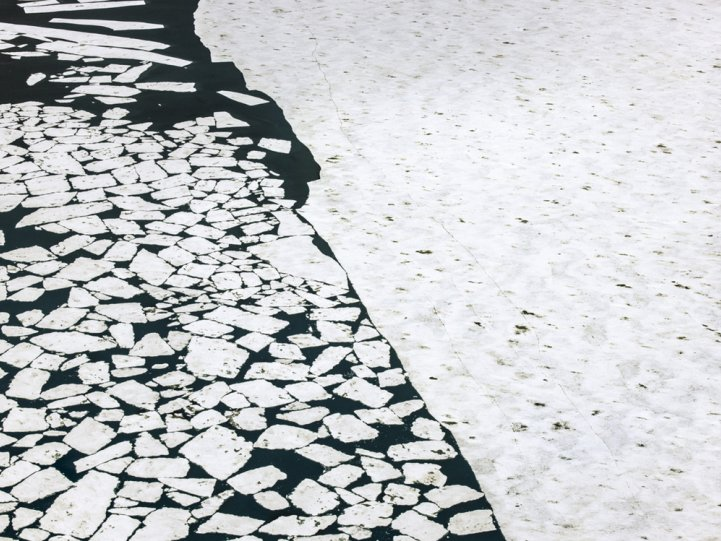Арктика в фотографиях Дайан Тафт - №17