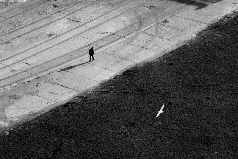 Красота минимализма в фотографиях Павла Франика - №19