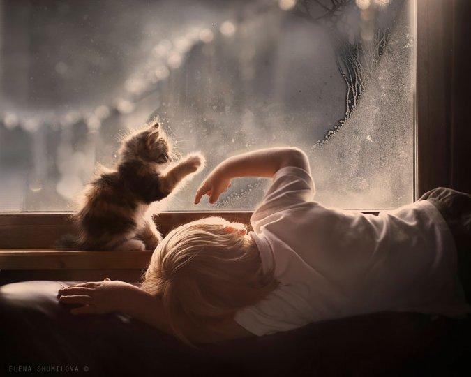 Фотограф Елена Шумилова - №4