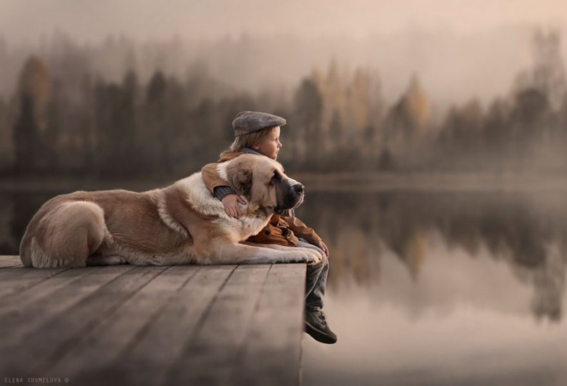 Фотограф Елена Шумилова - №7