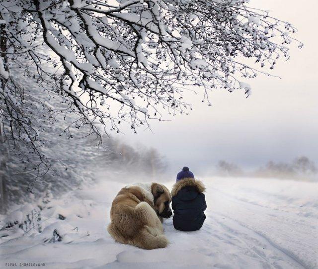 Фотограф Елена Шумилова - №16