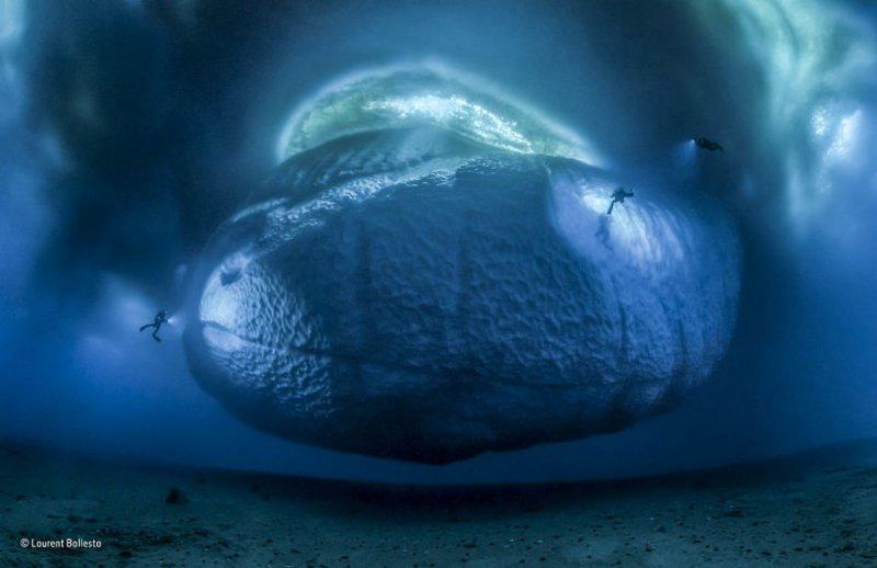 Автор фото: Лоран Баллеста. «Ледовый монстр»