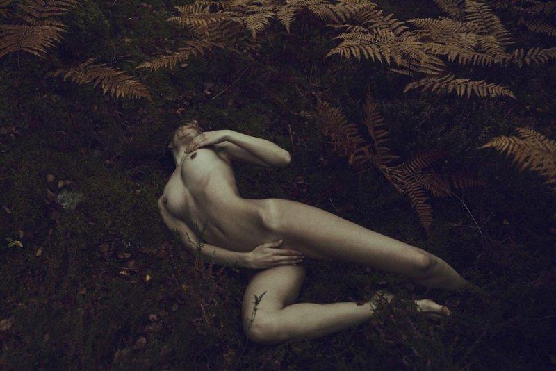Фотограф Стефан Раппо - №28