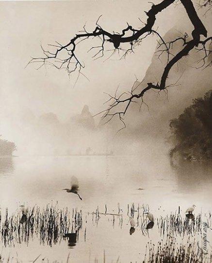 Фотограф Дон Хонг-Оай - №19