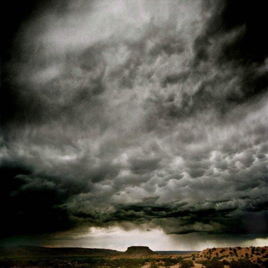 Фотограф Майкл Истмен - №1