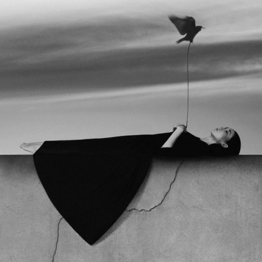 Фотограф Ноэль Освальд - №5
