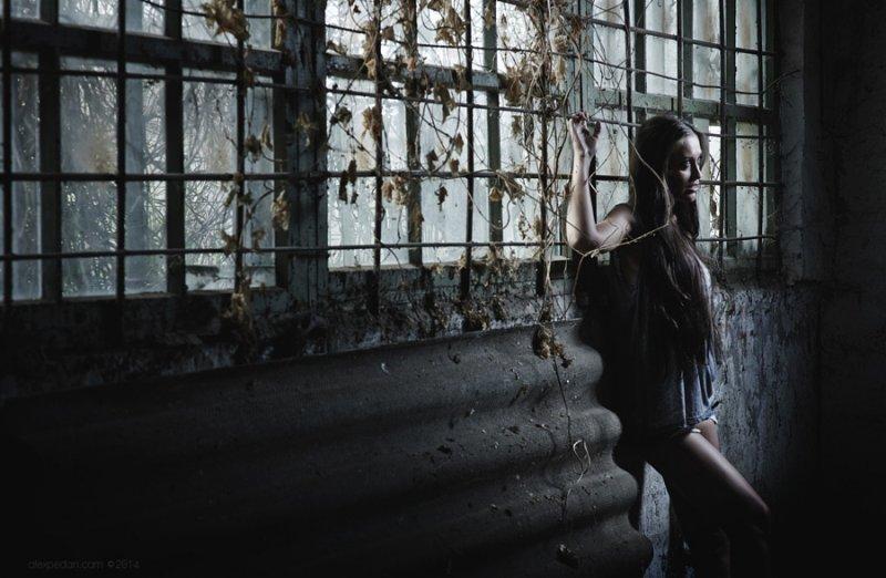 Портреты от Алексея Педана - №8