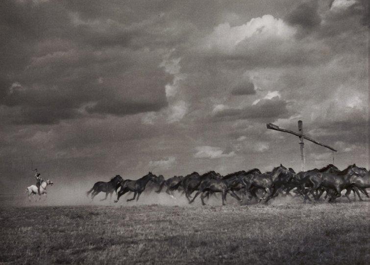 Фотограф  Эрнё Вадаш - №1