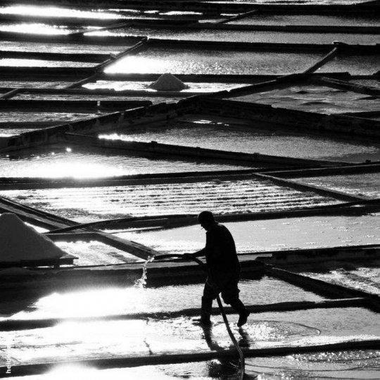 Итальянский фотограф Аугусто Кантамесса - №22