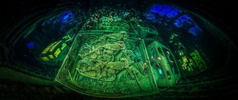 Автор фото: Тобиас Фридрих ( Германия). Место съёмки: затонувший британский вооружённый сухогруз «Тистлегорм», Шарм-эш-Шейх, Египет.