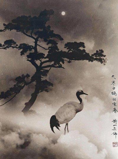Фотограф Лонг Чинсан - №3