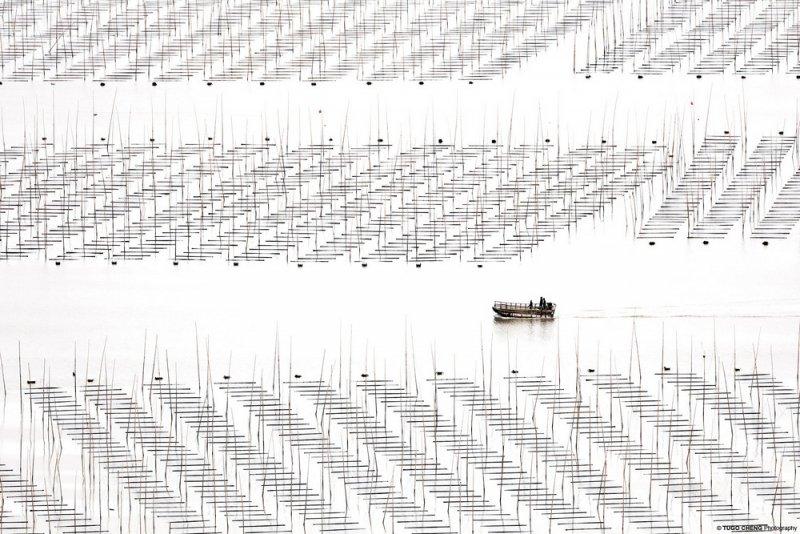 Фотограф Туго Ченг - №3