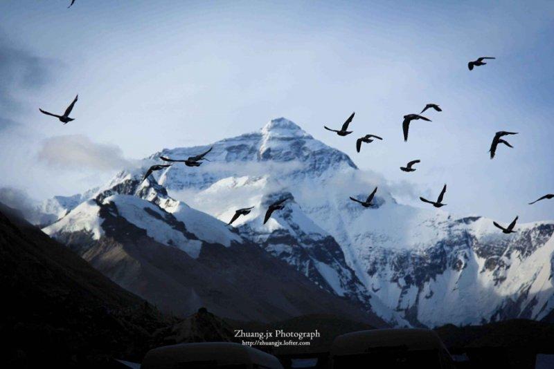 Эверест - №7
